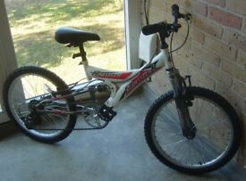Elswick mountain bike