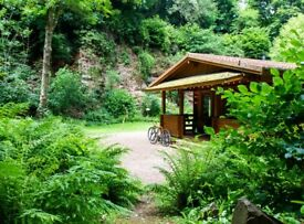 Log Cabin in the Woods - The Old Quarry (Somerset) - 4 nights (18th-22nd Jan)
