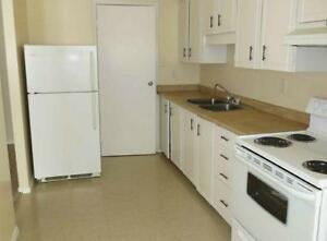 Beautiful and Affordable 1-3 Bedroom Suites Available Kitchener / Waterloo Kitchener Area image 2