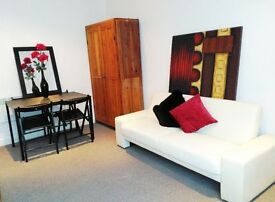 1 x Double Bedroom property with own bath/showeroom, kitchenette and living area -