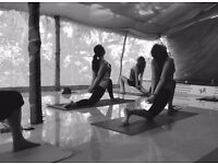 YOGA CLASSES at Home | Hatha & Vinyasa | Beginners & Advanced | Private & Group | Fitness Training