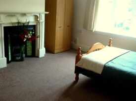 2 bargain double rooms to let in friendly professional house - Bills inc with no agency fees!