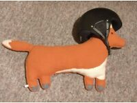 Dainese Snowboard Helmet