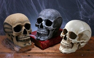 Scary Skull Skeleton Haunted Mansion Decoration Halloween Decor
