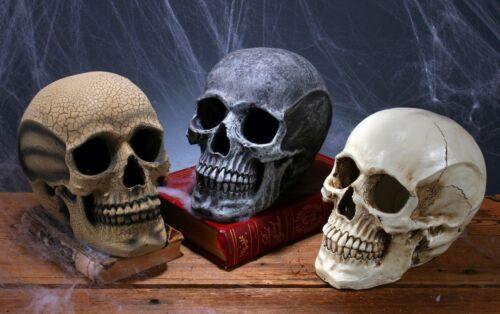 Scary Realistic Skull Skeleton Haunted House Mansion Decoration Halloween Decor