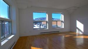 Fantastic Plateau 1BR 'loft style' unit, lots of space and sun