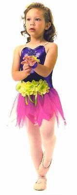 Pixie Dust Fairy Ballet Dance Costume Child Large Halloween (Halloween Ballet Dance)
