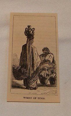small 1879 magazine engraving ~ WOMEN OF TUNIS, Tunisia