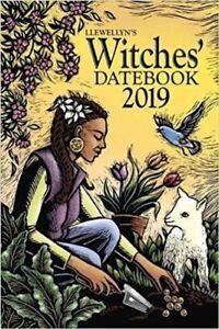 Llewellyn's 2019 Witches Datebook USA SELLER Planner Calendar Journal Wicca Celt