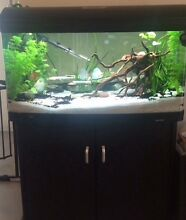 240L Aqua style 980 fish tank inbuilt filter & lights Canning Vale Canning Area Preview