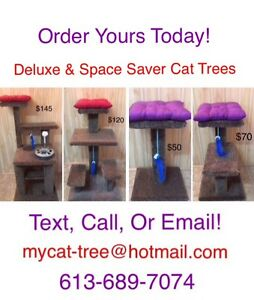 All New Line Up! Cat Trees