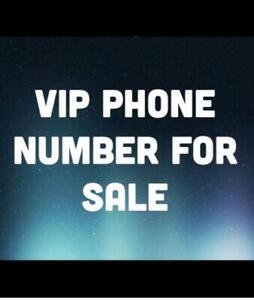 LET YOUR CLIENTS REMEMBER YOUR VIP 416/647/905 BUSINESS NUMBER