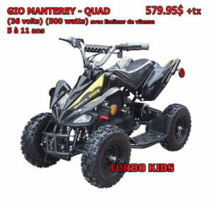 QUAD ÉLECTRIQUE, GIO MANTERAY (500 Watts) (36 Volts) - 579.95$
