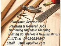 Handyman service /Painting/gardening / Putting up shelves/fitting and changing locks/General jobs