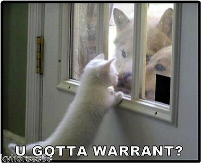 Funny Cat Humor U Gotta Warrant Refrigerator Magnet