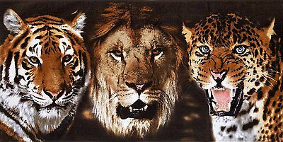 "Felines Beach Towel (Lion, Tiger, Jaguar) - 30"" x 60"" - Velour - Made In Brazil"