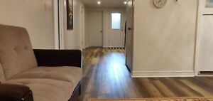 New 3bdrm fully furnished bsmt apartment for rent -Main/Bovaird