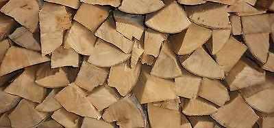 Brennholz BUCHE 25 - 33 cm trocken Kaminholz ofenfertig Holz Feuerholz  120 kg