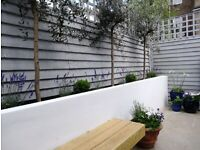 CITY GARDEN GIRL Garden maintenance / Power-wash/ Fence & garden wall painting