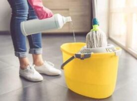Cleaning lady with experienced in houses and offices