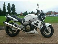 Honda X11 cb1100 naked muscle bike not blackbird