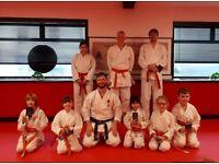 Shotokan Karate Classes -Belfast