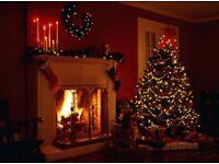 English Christmas king's log's