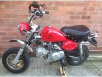 Skyteam 125cc monkeybike (road legal)