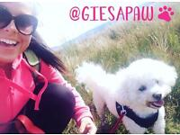 Gies A Paw - Dog Walking, Dog Walker, Puppy Visits, Home Boarding and Pet Sitter