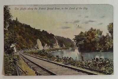 1911 ANTIQUE POSTCARD EPHEMERA paper collectible post card souvenir uncirculated divided back North Carolina Nc embossed framed nature trees