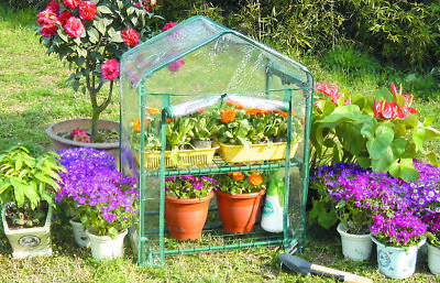 Greenhouse for the Garden Terrace Balcony cm 69x49x95h Ortho Plants Outer