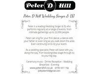Wedding Singer Peter HIll