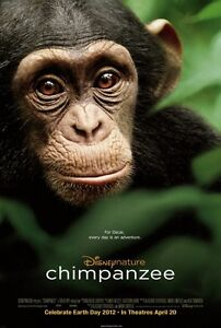 Chimpanzee original Disney movie poster