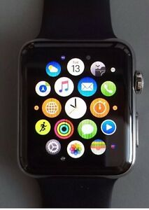 Apple Watch 42mm stainless steel with black sports buckle.