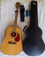 Cort EARTH F100 acoustic guitar