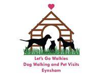 Let's go walkies Dog walking and pet visits