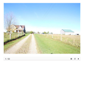Room in Wingham Farmhouse for Rent