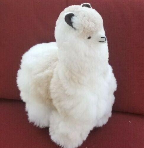 "Alpaca Fur (BIG) Llama Stuffed Made in Perú (17 ""x 13"") original photograph"