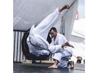 Jiu Jutsu and self defence classes