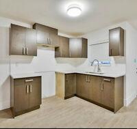 Home Improvement & Renovation