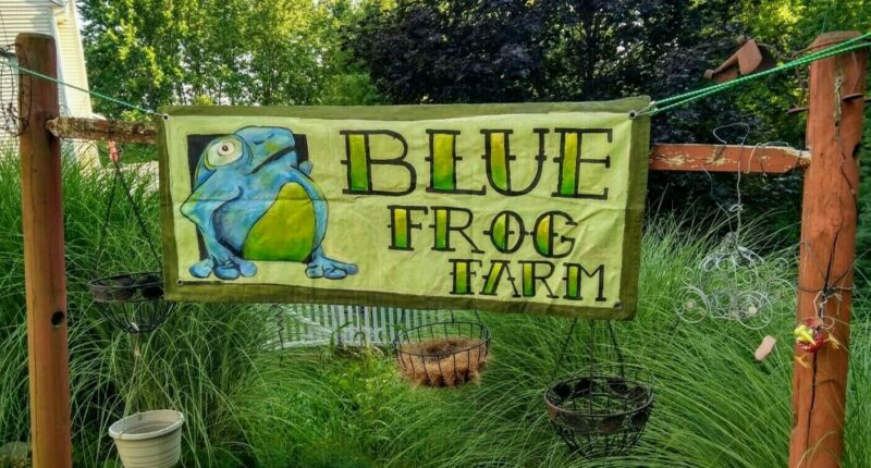 Hand painted Blue Frog vintage heavy fabric hanging banner with metal grommets!