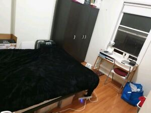 Single or Couples Room Ultimo