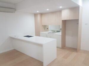 Designer showroom kitchen