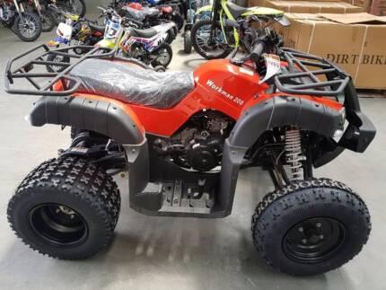 DDB 200cc FARM QUAD - NEW  2017  $2590