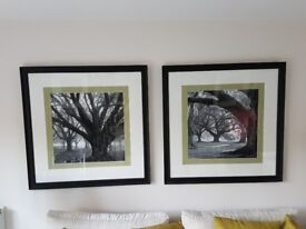 Pictures in black frames, woodland scenery, set of two