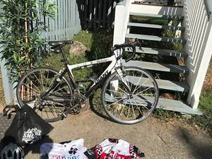 Giant TCR Team mobile bike Morningside Brisbane South East Preview