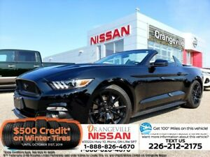2017 Ford Mustang GT Premium Covertible 5.0  Fully Loaded 9 K.