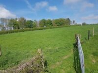 Paddocks available for grazing