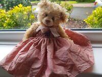 Pink Settler Bear