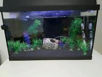 2 foot tropical fish tank complete just needs fish.